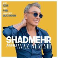 Shadmehr Aghili – Avaz Nemishi