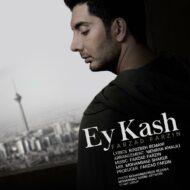 Farzad Farzin – Ey Kash
