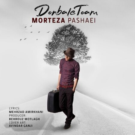 Morteza Pashaei – Donbale Toam