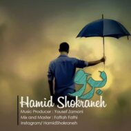 Hamid Shokraneh – Boro
