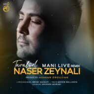 Naser Zeynali – Tavalod (Remix)